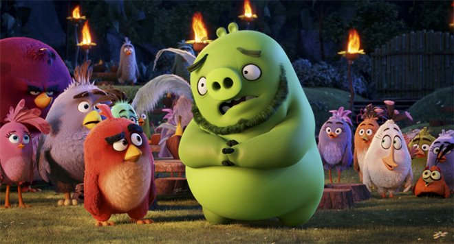 The Angry Birds Movie Photo 16 - Large