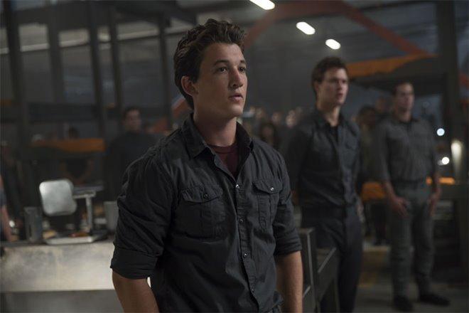The Divergent Series: Allegiant Photo 21 - Large