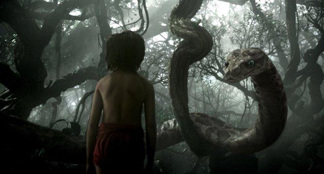 The Jungle Book Photo 4 - Large