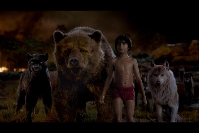 The Jungle Book Photo 11 - Large
