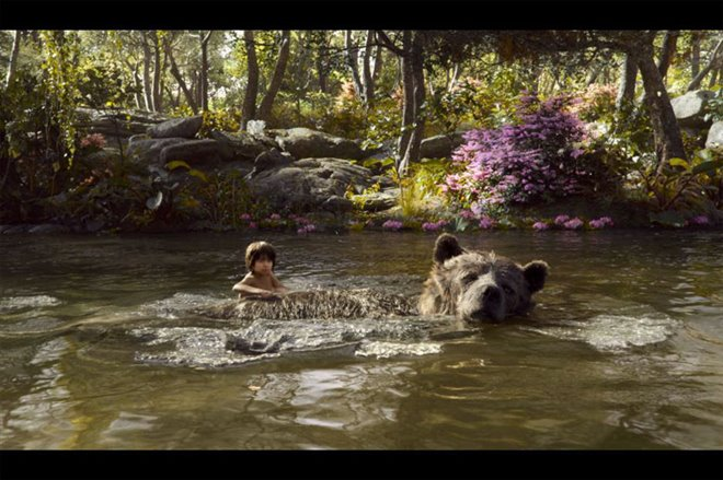The Jungle Book Photo 17 - Large