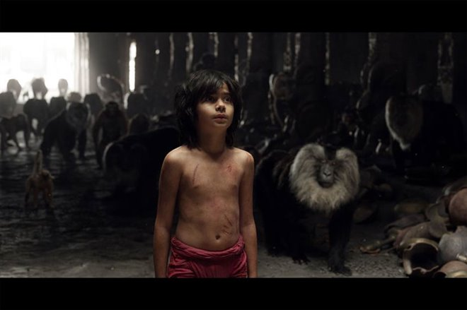 The Jungle Book Photo 21 - Large