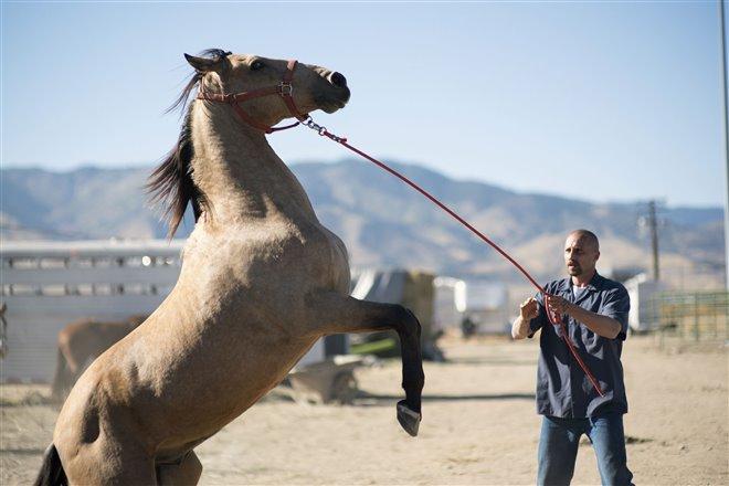 The Mustang (v.o.a.) Photo 2 - Grande