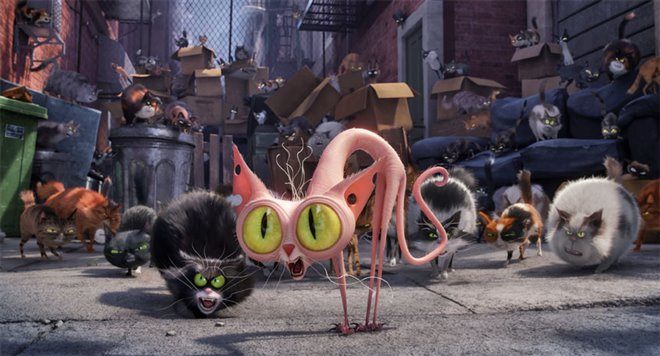 The Secret Life of Pets Photo 15 - Large