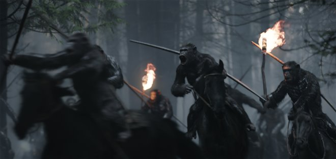 War for the Planet of the Apes Photo 6 - Large