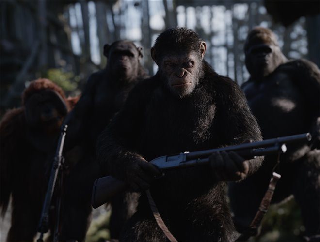 War for the Planet of the Apes Photo 8 - Large