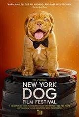 2019 NY Dog Film Festival Large Poster