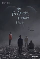 An Elephant Sitting Still Large Poster