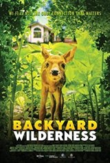 Backyard Wilderness 3D Affiche de film