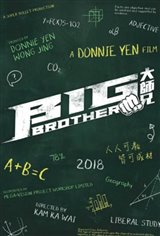 Big Brother Movie Poster Movie Poster
