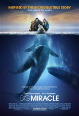 Big Miracle Affiche de film