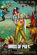 Birds of Prey: The IMAX 2D Experience Affiche de film