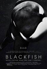 Blackfish Large Poster