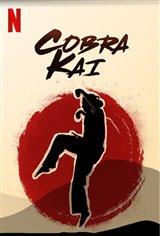 Cobra Kai Movie Poster