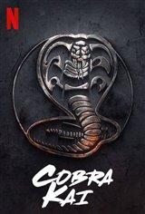Cobra Kai (Netflix) Movie Poster