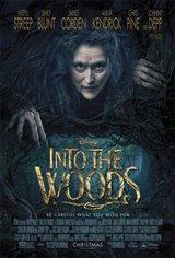 Dans les bois (v.o.a.s.-t.f.) Affiche de film