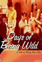 Days of Being Wild Movie Poster
