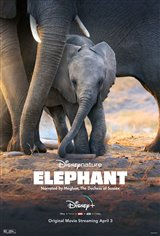 Elephant (Disney+) movie trailer