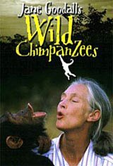 Jane Goodall's Wild Chimpanzees Movie Poster