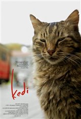 Kedi : Au royaume des chats (v.o.s.-t.f.) Movie Poster