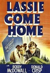 Lassie Come Home Movie Poster