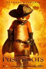 Le chat potté 3D Movie Poster