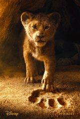 Le roi lion Affiche de film