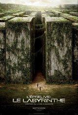 L'épreuve : Le labyrinthe Affiche de film