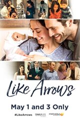 Like Arrows Large Poster