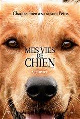 Mes vies de chien Affiche de film