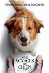 Mes voyages de chien Affiche de film