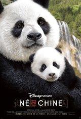 Né en Chine Affiche de film