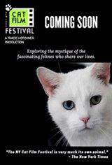 NY Cat Film Festival Program 2 Movie Poster