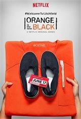 Orange is the New Black: Season 4 (Netflix) Movie Poster