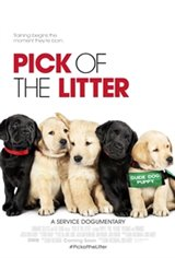 Pick of the Litter Affiche de film