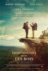 Promenons-nous dans les bois (v.o.a.s.-t.f.) Affiche de film