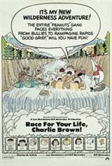 Race For Your Life Charlie Brown Movie Poster