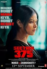 Section 375 Large Poster