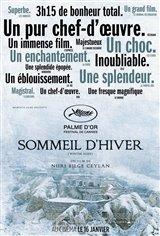 Sommeil d'hiver Affiche de film