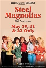 Steel Magnolias 30th Anniversary (1989) presented by TCM Large Poster