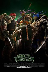 Teenage Mutant Ninja Turtles 3D Movie Poster