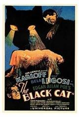 The Black Cat Movie Poster