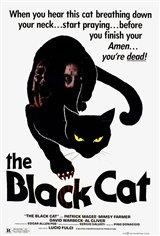 The Black Cat (1981) Affiche de film