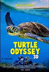 Turtle Odyssey: An IMAX 3D Experience Movie Poster