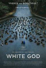 White God (v.o. hongrois, s.-t.a.) Affiche de film