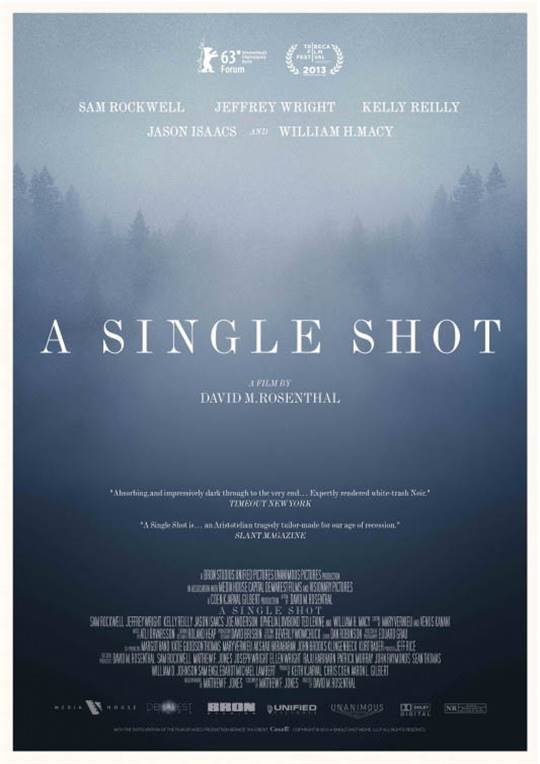 A Single Shot Large Poster