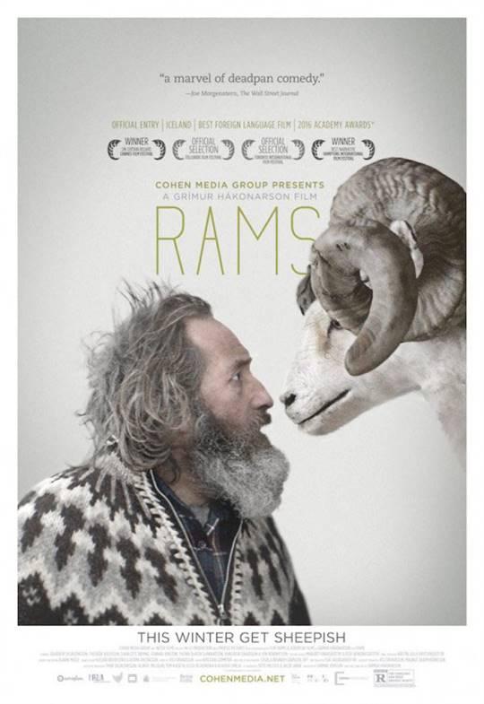 Rams Large Poster