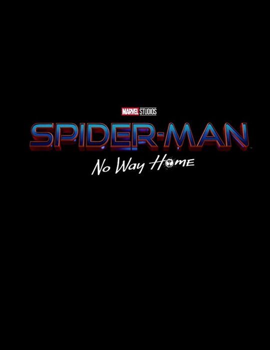 Spider-Man: No Way Home Large Poster
