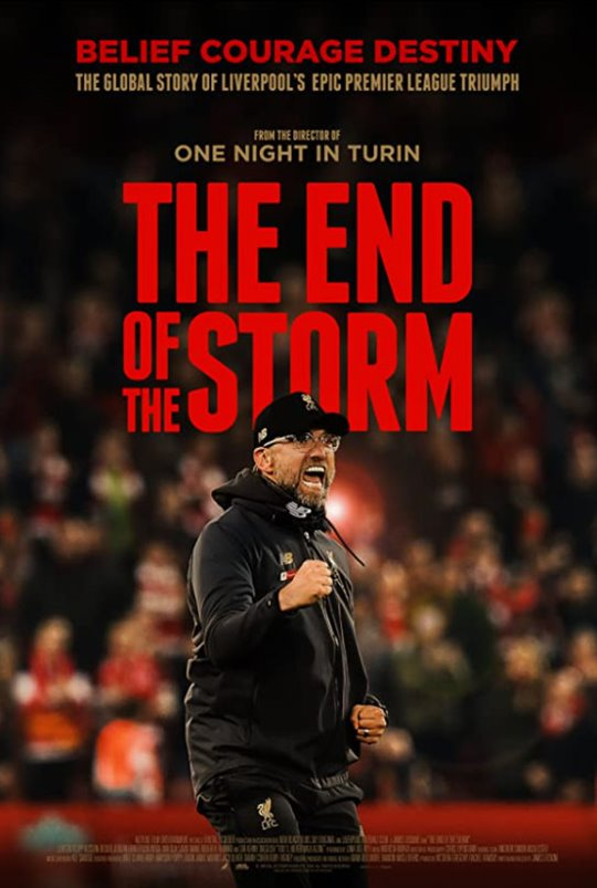 The End of the Storm Large Poster