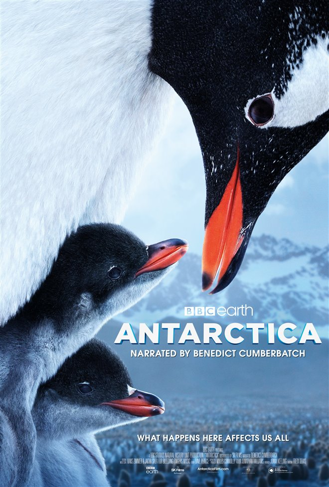 Antarctica Large Poster